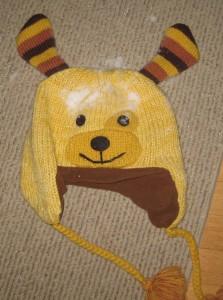 doggie hat