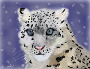 Illustration courtesy of Shelly (https://www.sketchport.com/drawing/4940029541482496/snow-leopard) via Creative Commons license.